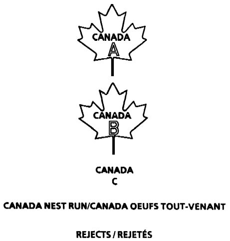 Outline of a maple leaf with the following text inside CANADA A. Outline of a maple leaf with the following text inside CANADA B. The text CANADA C with no outline. The text CANADA NEST RUN with no outline. The text REJECTS with no outline.