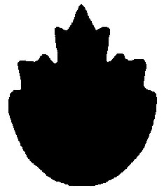 Symbol for national safety mark consisting of a top half of a maple leaf attached to the bottom half of a circle